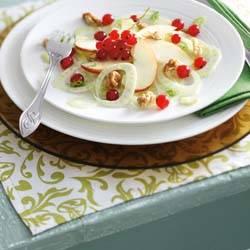 Venkelsalade met rode appel en aalbessen recept