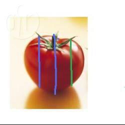 Met mozzarella gevulde cherrytomaat. recept