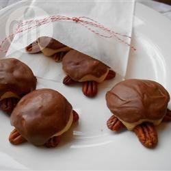 Schildpad koekjes recept