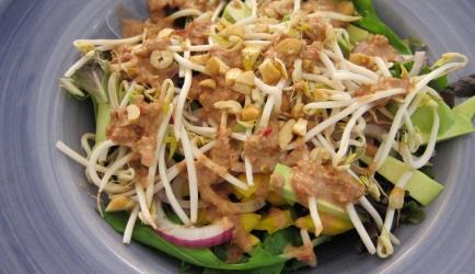 Thaise mango avocado salade recept