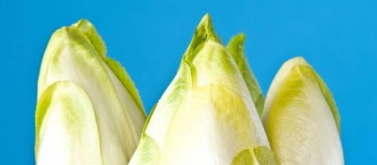 Gegrilde witlof met spekjesvinaigrette recept