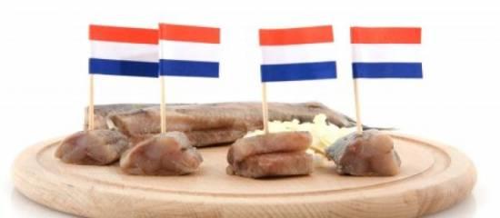 Hollandse haringsalade recept