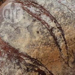 Honing wit-volkorenbrood recept