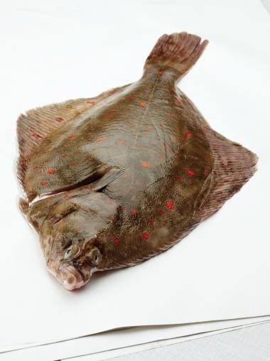 Recept 'pladijs met puree van savooikool'