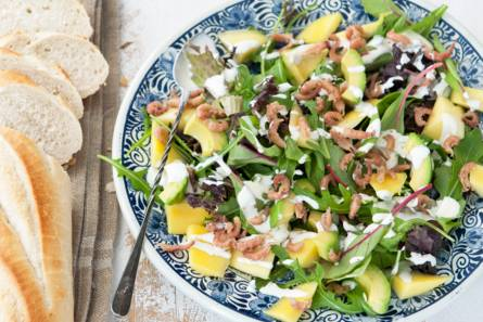 Avocadosalade met hollandse garnalen en mango