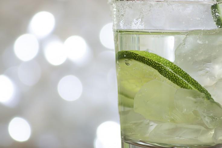 Zo maak je de perfecte gin-tonic